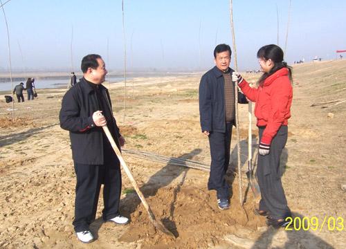 武汉市新洲区政协机关组织开展义务植树活动