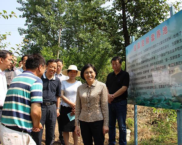 杨玉华强调:要进一步重视和加强湖北汉江流域水污染防治
