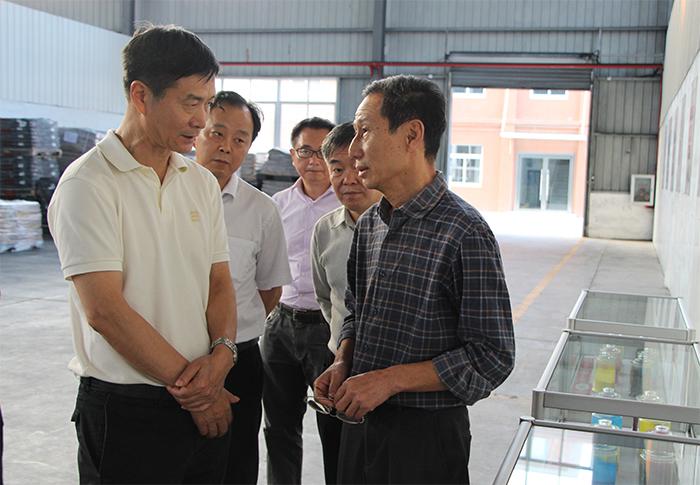 彭军在黄冈调研强调:把防风险与促发展更好结合起来