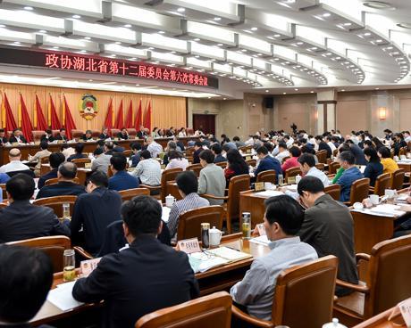 """聚焦""""以长江绿色经济和创新驱动发展带引领湖北高质量发展""""    省政协"""